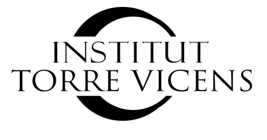 IES Torre Vicens logo